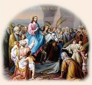Lord Jesus Christ Arrives in Jerusalem is welcomed with Sacred Palms and rides upon the back of a donkey.Earlier as Lord Balarama he liberated Denukasura the Donkey Demon by throwing him into the Palm tree. As Jesus the Donkey was blessed to carry the Lord into Jerusalem upon a carpet of sacred palm fronds. were