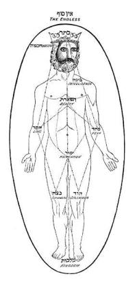 The Jewish Kabbalistic Adam Kadmon: Note that His Body is the extant of the Cosmic Egg and the Symbol of the Supreme Lord and Abode is above this Divine Cosmic Man's Head and that His CROWN is depicted as the Highest node of the Sephiroth or Mystical Tree of Life and Divine Emanation.