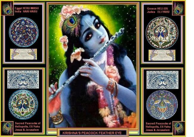 Krishna Peacock Montage 5